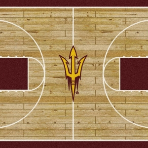 Arizona State Court