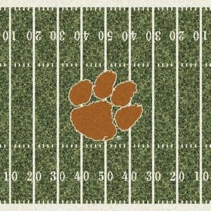 Clemson Field
