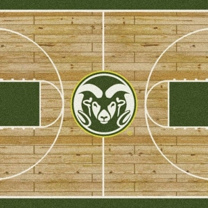 Colorado State Court