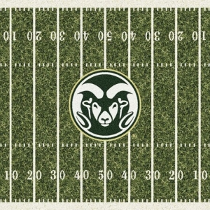 Colorado State Field