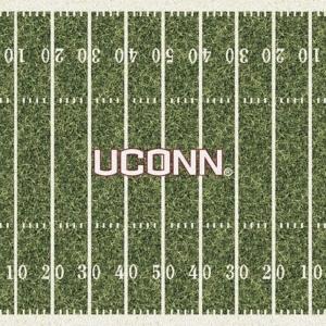 Connecticut Field