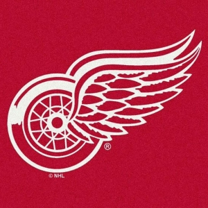 Detroit Redwings Spirit