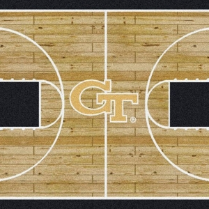 Georgia Tech Court