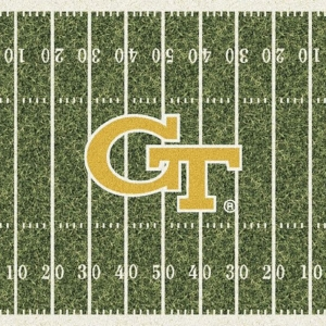 Georgia Tech Field