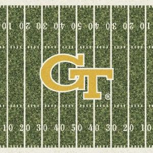 Georgia Tech Field