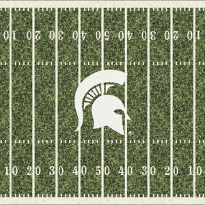 Michigan State Field