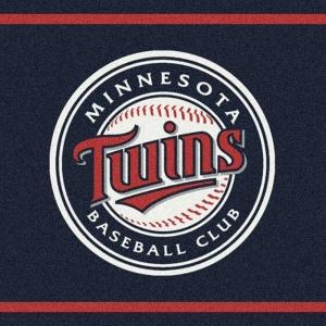 Minnesota Twins Spirit