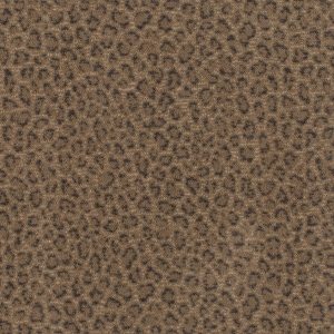 Native Trace African Plain