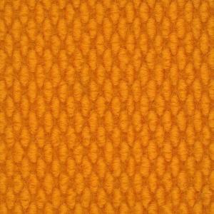 Sanford-Orange