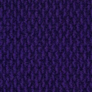 Sanford-Purple