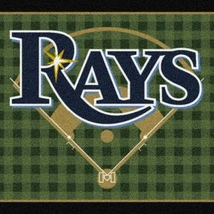 Tampa Bay Rays Field